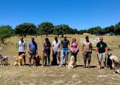 grupo-completo-curso-adiestramiento-perros