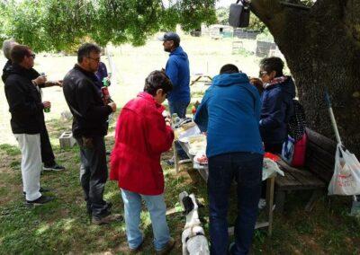 cursos de educacion canina en grupo madrid en febrero del 2017
