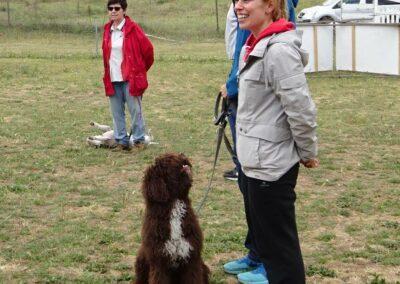 graduación clases intensivas de educacion canina en Febrero 2017 madrid