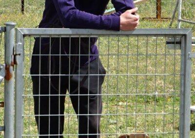 clases intensivas de educacion canina en Febrero 2017 madrid