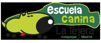 La Tejera, Escuela canina. Adiestramiento canino en Madrid.
