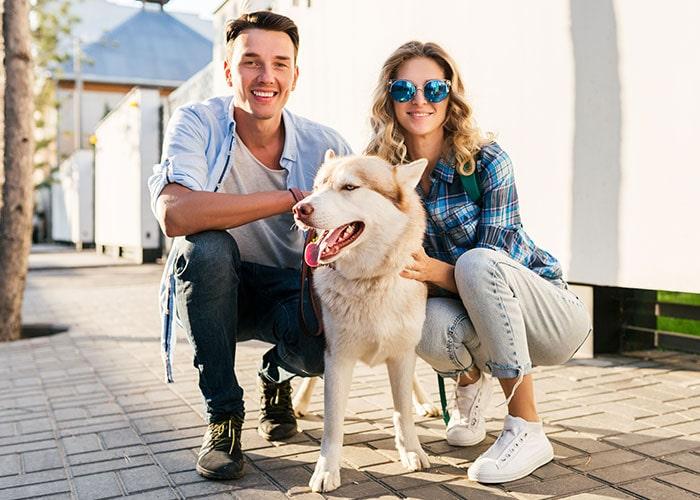 perro-equilibrado-paseando-tranquilo-escuela-canina-la-tejera