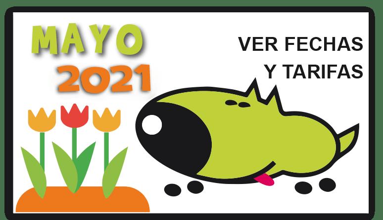 curso-mayo-2021