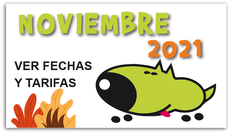 curso-noviembre-2021